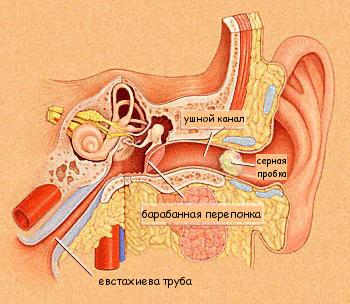 Серные пробки в ушах и их лечение в домашних условиях.