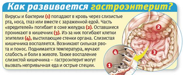 Как развивается гастроэнтерит
