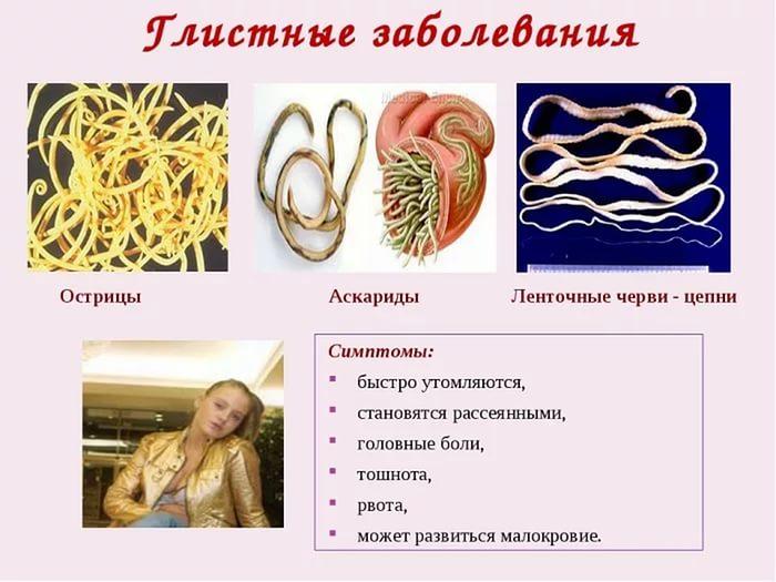 глистные заболевания