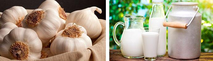 молочно-чесночная смесь от гельминтов