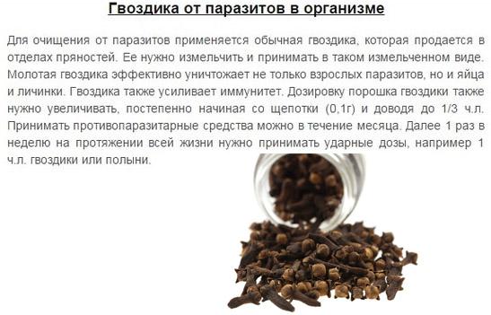 польза гвоздики от паразитов