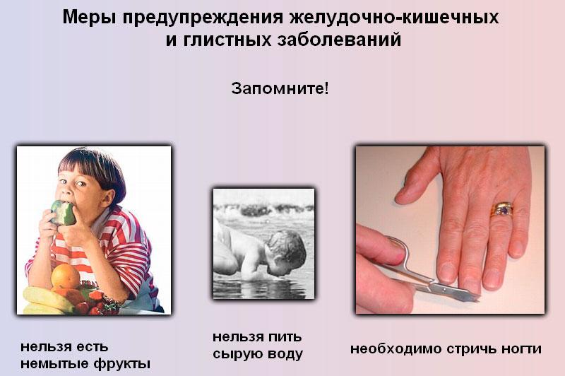 профилактика глистных инвазий
