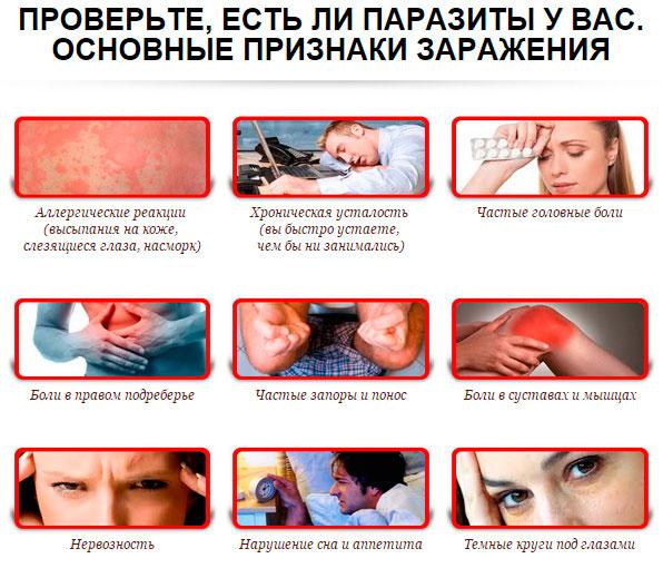 симптомы наличия глистов в организме