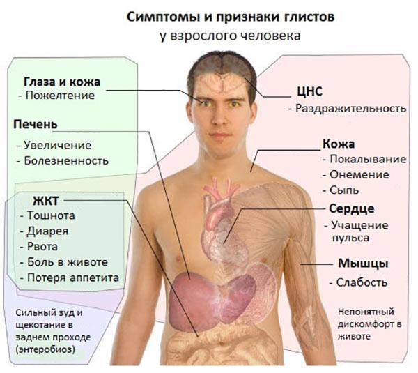 симптомы присутствия паразитов в организме