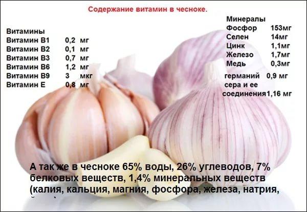состав витаминов в чесноке