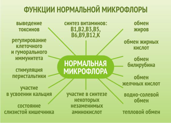функции микрофлоры ЖКТ