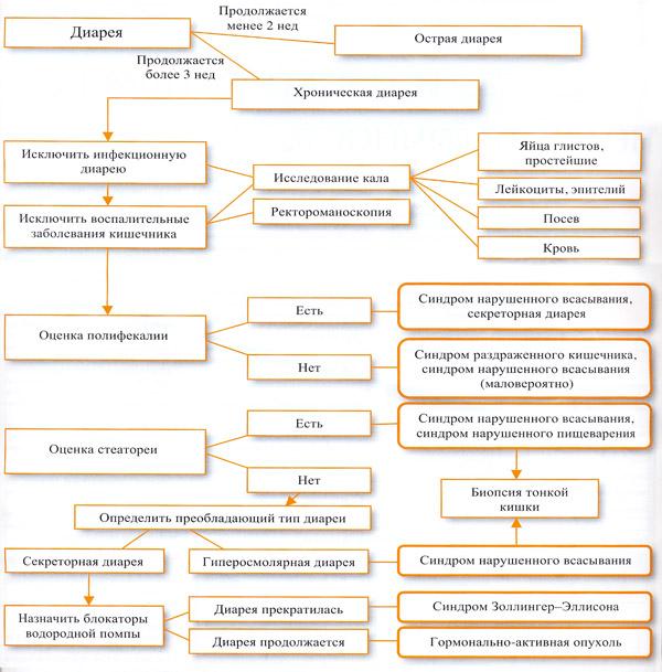 алгоритм диагностики поноса