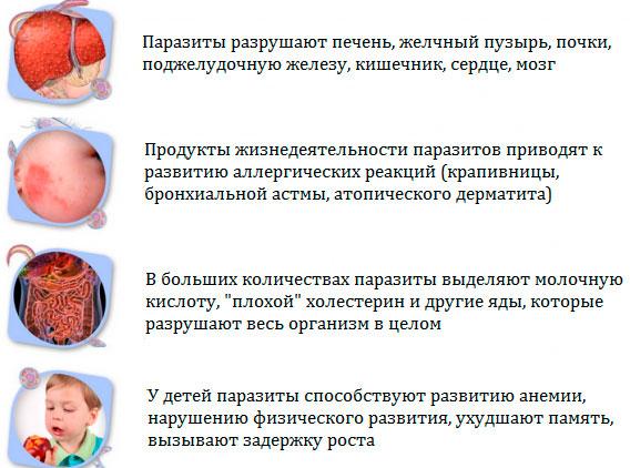 влияние паразитов на организм