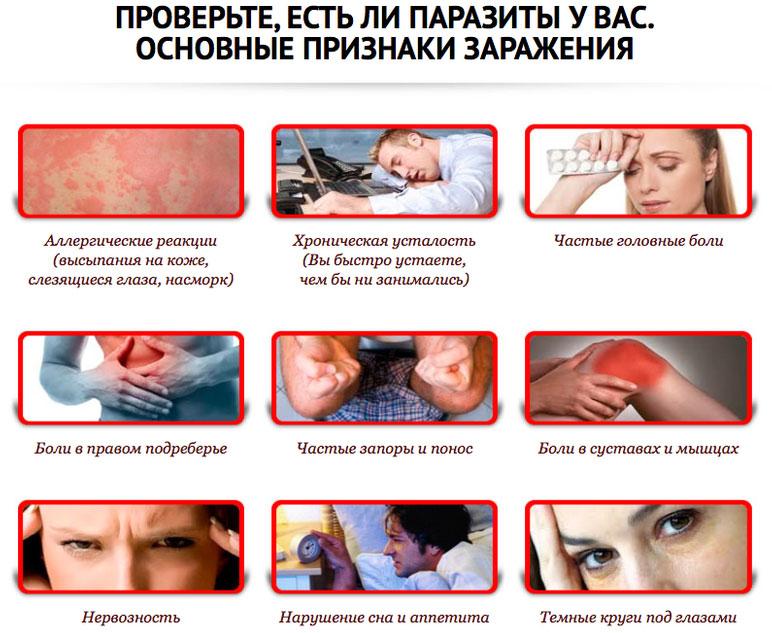 основные признаки заражения паразитами