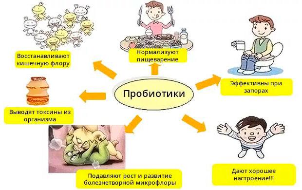 польза пробиотиков